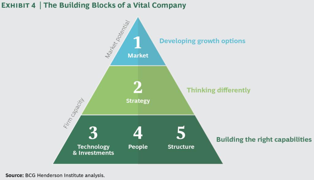 corporate vitality